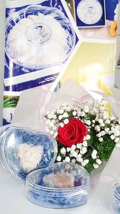Yến sào tinh chế và hoa hồng làm quà tặng bạn gái